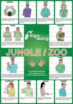 Jungle/Zoo Poster, J) Posters, Signalong Store Sign Language Book, Sign Language Chart, Sign Language Phrases, Sign Language Alphabet, Learn Sign Language, Sign Language Interpreter, British Sign Language, French Language, Dear Zoo Activities