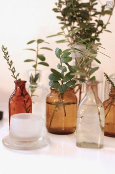 Amber glass bottles with greenery inside. Wedding Bottles, Wedding Vases, Wedding Table, Floral Wedding, Our Wedding, Wedding Flowers, Bottle Centerpieces, Amber Glass Bottles, Home And Deco