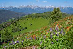 - Shrine Ridge Morning  by Aaron Spong #Colorado