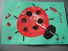 Juf Sanne Lesidee: insecten, knutselen, kringactiviteiten, woordkaarten, stempelkaarten, werkbladen, lessen, thema, knutselen, idee, ruimtelijk, platte vlak, kring, hoek inrichten