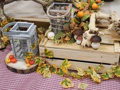 Decorazioni Autunnali Per La Casa : Fantastiche immagini su autunno decorazioni e idee