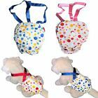 Dog Diaper Sanitary Pant Reusable Washable Stay On With Suspenders For SMALL Pet | eBay Small Dog Breeds, Small Breed, Small Dogs, Pet Dogs, Dogs And Puppies, Doggies, Female Dog Diapers, Puppy Diapers, Belly Bands For Dogs