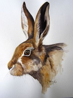 Animal watercolour, watercolour painting, watercolors, decoupage vintage, r Watercolor Paintings Of Animals, Animal Paintings, Watercolor Art, Animal Watercolour, Hare Pictures, Rabbit Pictures, Hare Illustration, Illustrations, Animal Sketches