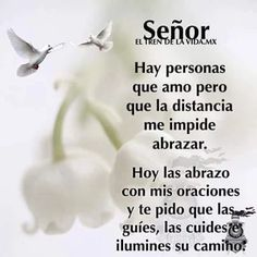 Oscar Garzon's media content and analytics Spanish Inspirational Quotes, Spanish Quotes, Morning Greetings Quotes, Morning Messages, Good Night Quotes, Good Morning Good Night, Spanish Prayers, Gods Love Quotes, Morning Prayers