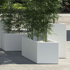 Pflanzkasten CUBE-Long-L cm h - nimivo sites Bamboo Containers, Container Plants, Dry Garden, Garden Pots, Backyard Patio Designs, Backyard Landscaping, Balcony Hanging Plants, Rooftop Design, Bloom Where You Are Planted