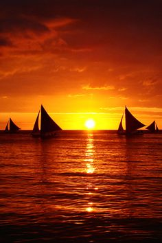 A fiercely fiery sunset over the water. #sunset #boats #sailboats