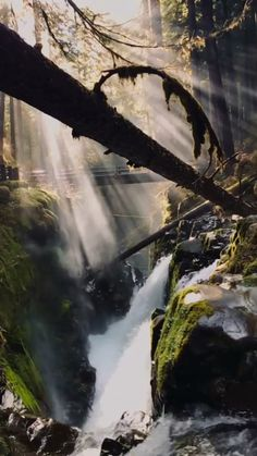 Fluorescent Light Covers, Special Effects, Habitats, Waterfall, Travel, Outdoor, Outdoors, Viajes, Waterfalls