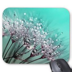 Dandelions Water Droplets and Turquoise Mouse Pad - photography gifts diy custom unique special Bohemian Wall Tapestry, Mandala Tapestry, Mandala Art, Wall Tapestries, Diamond Wall, Water Droplets, Pink Walls, Great Artists, Pantone