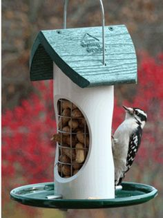 Woodpeckers love the Peanut/Mix Bird Feeder.