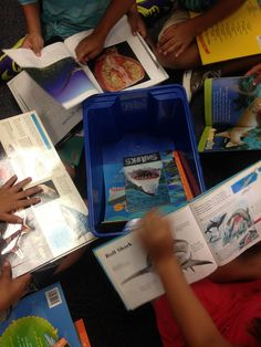An Introduction to Inquiry in the Primary Grades-- so helpful!