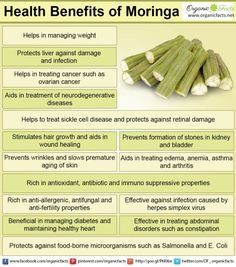 benefits of moringa include relief from stomach disorders, allergies and Health benefits of moringa include relief from stomach disorders, allergies and .Health benefits of moringa include relief from stomach disorders, allergies and . Calendula Benefits, Lemon Benefits, Matcha Benefits, Coconut Health Benefits, Benefits Of Moringa Leaves, Cilantro Benefits, Tomato Nutrition, Stomach Ulcers, Stop Eating