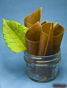 The 3 Foragers: Foraging for Wild, Natural, Organic Food: Japanese Knotweed Recipe - Knotweed Fruit Leather