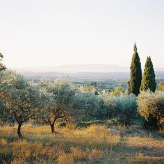 Delicate Provence sunrise