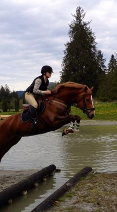 Sharon like the way this horse jumps and even asks for a video!