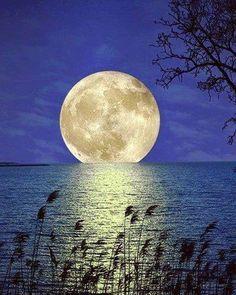 Night Moon c190215 c120315 k140815