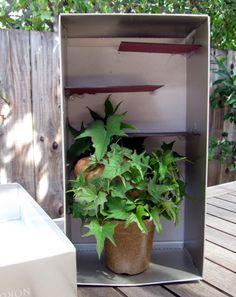 Activities: Potato Maze: Make a Plant Obstacle Course!