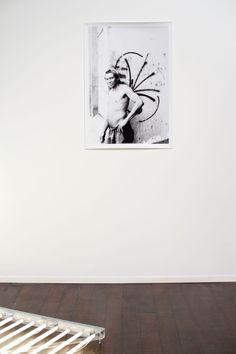 Três Gaivotas • Anton Steenbock