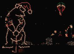 Golfing bear Christmas lights :)