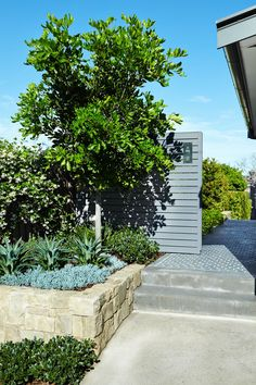 Outdoor Establishments is a Sydney based Landscape Architecture & Residential Garden Design firm also offering clients Landscape Construction, Professional Horticulture and Garden Maintenance. A complete Landscape service from concept to completion. Backyard Garden Design, Backyard Landscaping, Back Gardens, Outdoor Gardens, Raised Gardens, Vertical Gardens, Formal Gardens, Outdoor Plants, Tiered Garden
