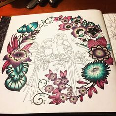 #magicaljungle #johannabasford #adultcolouring #relaxing