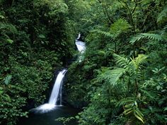 Monteverde, Costa Rico