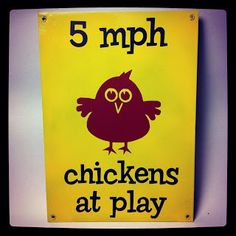 Cute DIY chickens at play sign