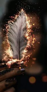Burning feather wallpaper - Source by Feather Wallpaper, Animal Wallpaper, Galaxy Wallpaper, Colorful Wallpaper, Black Wallpaper, Nature Wallpaper, Mobile Wallpaper, Wallpaper Quotes, Wallpaper Desktop