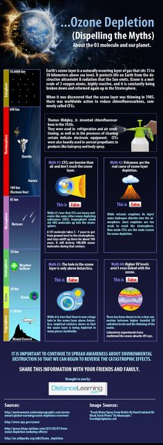 infographic dispels myths and explains the truth and history of ozone deple. This infographic dispels myths and explains the truth and history of ozone deple., Climate change protest signs,This Tennessee, Ozone Depletion, Global Warming Climate Change, 7th Grade Science, Ozone Layer, Greenhouse Effect, Environmental Issues, Environmental Chemistry, Environmental Posters