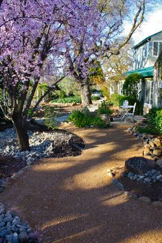 decomposed granite front yard - Google Search