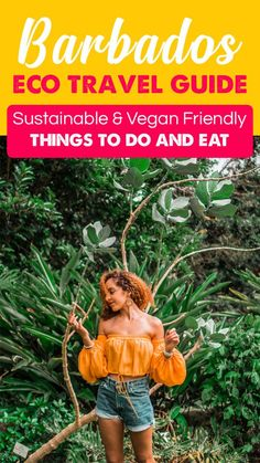 Best Barbados Eco Travel Guide: Sustainable and Vegan Friendly Things to Do and Eat – Ashley Renne Barbados Resorts, Visit Barbados, Barbados Travel, Sustainable Tourism, Vegan Friendly, Eco Friendly, Romantic Travel, Places To Travel, Sustainability
