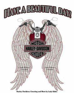 #harley davidson dyna pictures #harleydavidsondynamodels #harleydavidsondynastreetbob #harleydavidsondynalowrider #harleydavidsondynabagger #harleydavidsondynasuperglide Harley Davidson Sportster, Harley Davidson Custom, Harley Davidson Roadster, Harley Davidson Fat Bob, Harley Davidson Quotes, Harley Davidson Helmets, Harley Davidson Pictures, Motor Harley Davidson Cycles, Harley Davidson Street Glide