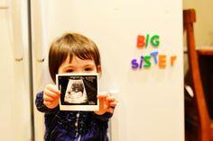 "pregnancy announcement!  ""big brother"" - good idea"