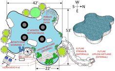 Ideas for a swim pond