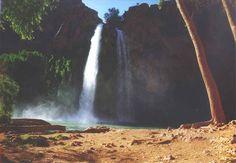 Havasu Falls, Arizona Havasu Falls Arizona, Los Padres National Forest, Visiting The Grand Canyon, Arizona Road Trip, Romantic Vacations, Outdoor Life, Vacation Spots, Travel Usa, The Great Outdoors