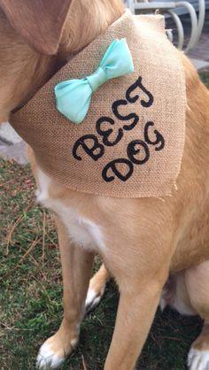 A personal favorite from my Etsy shop https://www.etsy.com/listing/386289580/best-dog-wedding-burlap-bandana