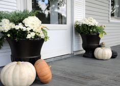 Pots of Flowers
