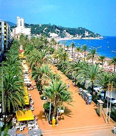 Lloret De Mar Palms, Spain Had a Cuba Libre right there on the promenade. Cool Places To Visit, Places To Travel, Places To Go, Holiday Places, Holiday Destinations, Travel Around The World, Around The Worlds, Places In Spain, Voyage Europe