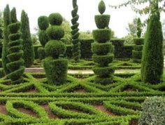 Fantastisk trädgårdskonst – så kallad topiary art - Sköna hem