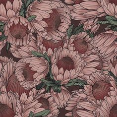 Protea by Lise Søgaard - A digitally hand drawn pattern with large and lush protea flowers. The flower pattern has a compact, detailed and harmonious Textured Wallpaper, Flower Wallpaper, Pattern Wallpaper, Botanical Drawings, Surface Pattern Design, Textures Patterns, Art Pictures, Fantasy Art, Art Drawings