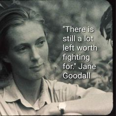 These 13 Quotes From Jane Goodall Will Unleash Your Wild Heart — womendotcom Source by Jane Goodall, Great Quotes, Me Quotes, Inspirational Quotes, Uplifting Quotes, Strong Quotes, Attitude Quotes, Character Quotes, Interesting Quotes