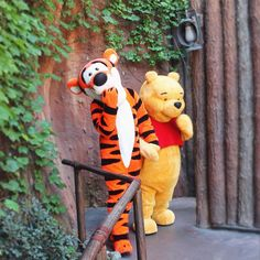Pooh and Tigger visiting Critter Country from the Hundred Acre Wood!     #pooh #winniethepooh #poohbear #tigger #disneyland by disneyashleigh