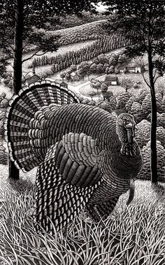 The Art of Douglas Smith - mashKULTURE