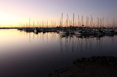Keith-Metcalf_Manly-marina_29-6-2014.JPG