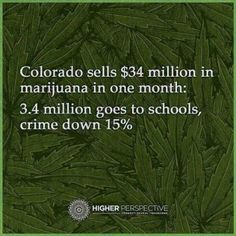 Colorado sells $34 million in cannabis in 1 month  3.4 million goes to schools, crime is down 15%  Who says Marijuana doesn't pay?!?