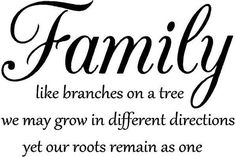 Family like branches on a tree Vinyl Decal Wall Art Lettering Quote Nursery