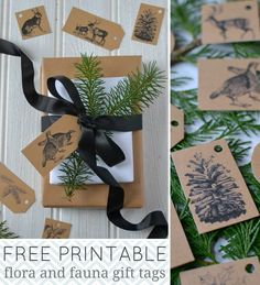 Free printable Christmas holiday gift tags with vintage plant and animal designs. Print a whole sheet of festive tags at home. By Decorator's Notebook blog.