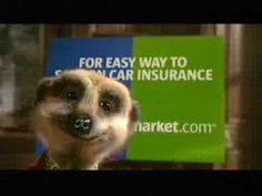 Hi, I'm Aleksandr. This is my advertisement for Compare the Meerkat you have likely seen on your television set. It is featuring me in my home making clear m. Tv Adverts, Tv Ads, Online Marketing, Social Media Marketing, Digital Marketing, Car Insurance Comparison, Compare The Market, Successful Marketing Campaigns, Digital Campaign