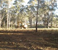 At Macarthur Tree and Excavation we offer a range of Tree Removal and Demolition services in Macarthur and Sydney Regions. Call us now for a free quote.
