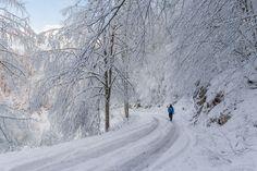 Winter loneliness by Deni Peršić on 500px