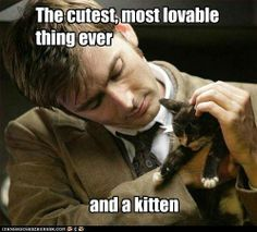 Doctor Who David Tennant with kitten